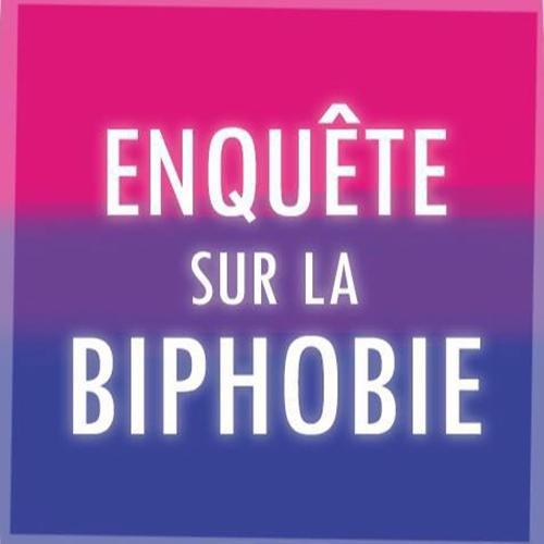 enquete biphobie